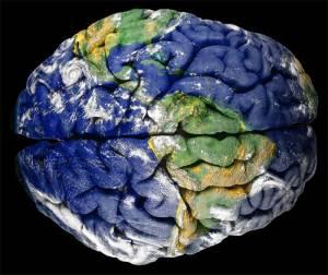 earth-brain
